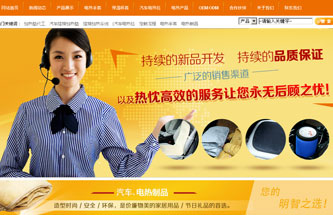 NO-36005营销型网站建设模板
